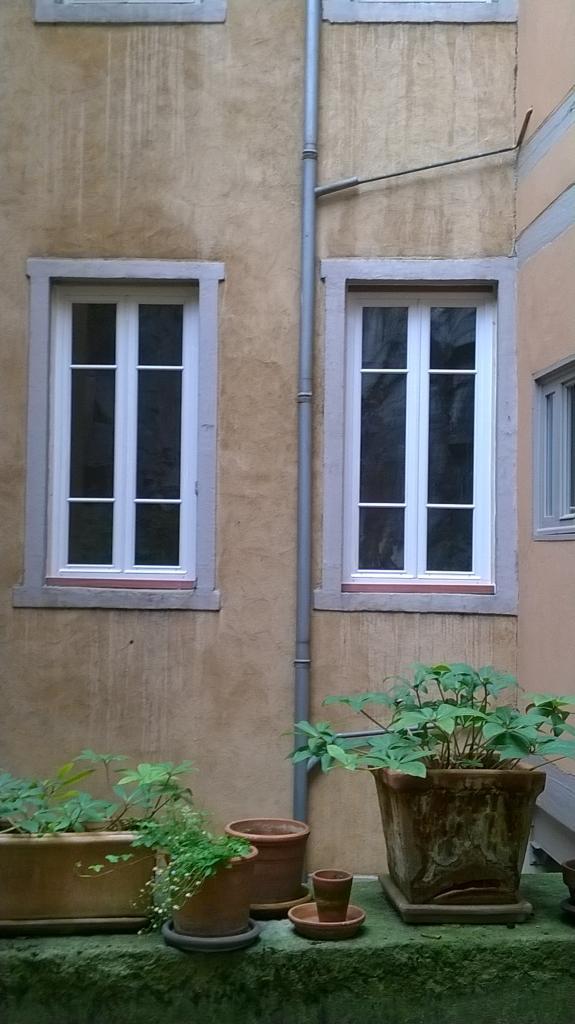 Fenêtre sur mesure - Bois
